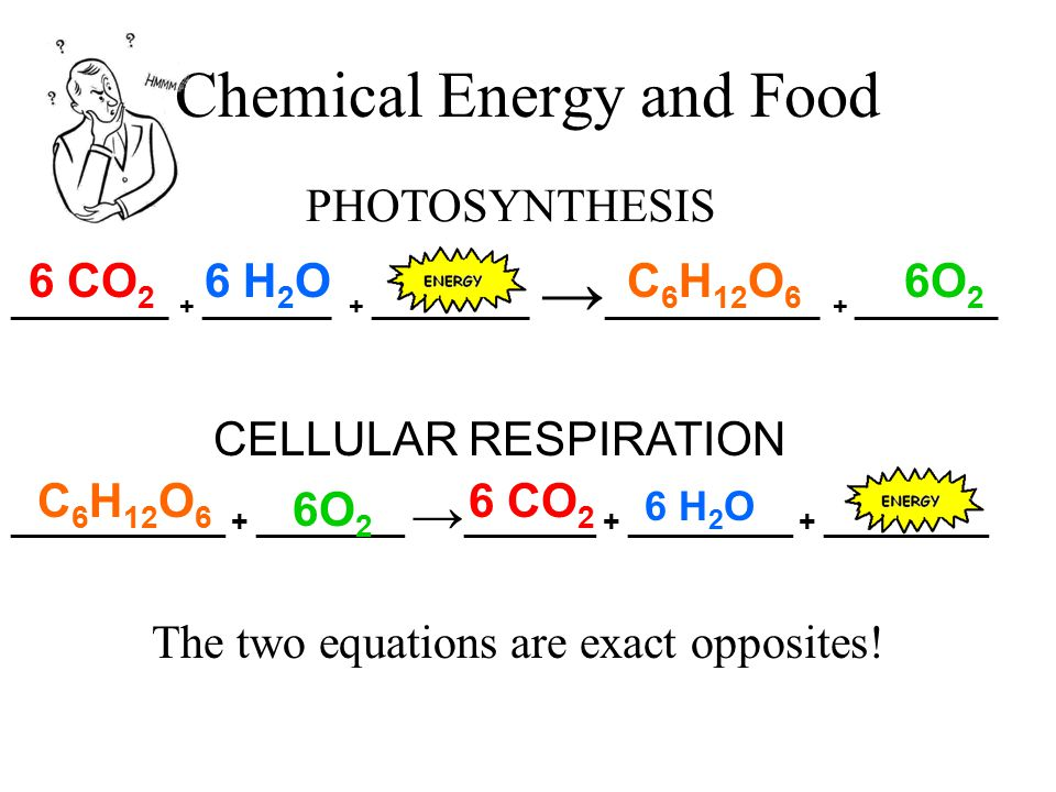 Chemical Energy and Food Amount of heat it takes to raise 1 gram of water 1 o Celsius = calorie Unit for measuring energy in food = Calorie 1 Calorie = 1,000 calories