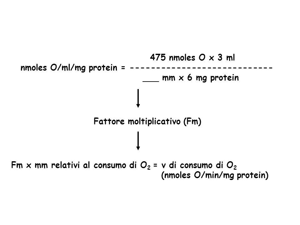 475 nmoles O x 3 ml nmoles O/ml/mg protein = ---------------------------- ___ mm x 6 mg protein Fattore moltiplicativo (Fm) Fm x mm relativi al consumo di O 2 = v di consumo di O 2 (nmoles O/min/mg protein)