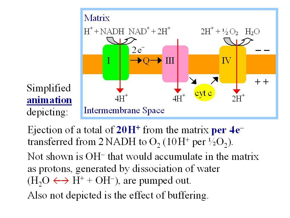 Range of detection of O 2 : 10 -4 atm (i.e.0.01%) – 1 atm (i.e.