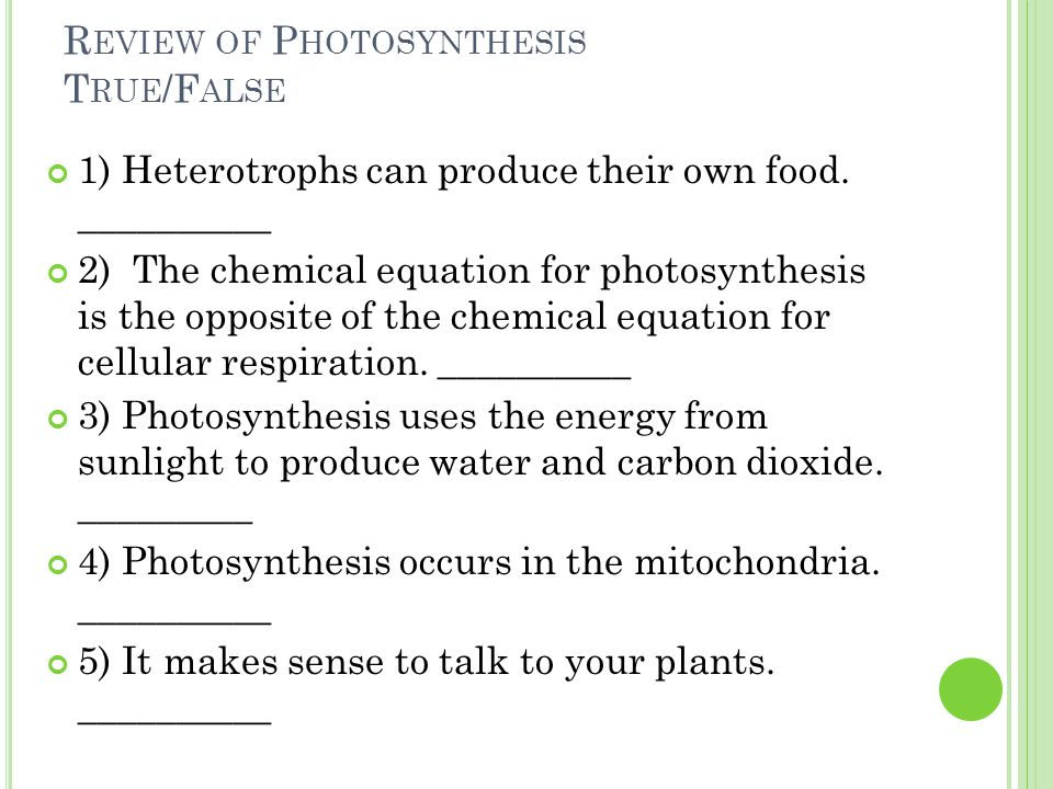 R EVIEW OF P HOTOSYNTHESIS T RUE /F ALSE 1) Heterotrophs can produce their own food.