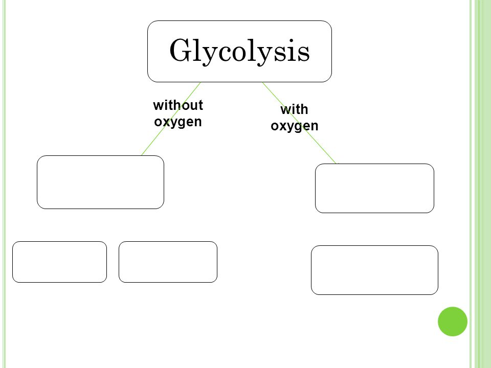 with oxygen without oxygen Glycolysis