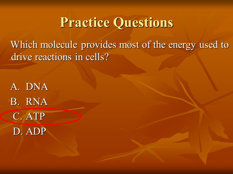 Practice Questions Which molecule provides most of the energy used to drive reactions in cells.