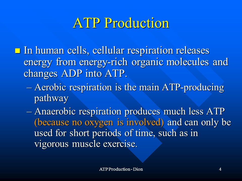 ATP Production - Dion15 Alternative Energy Sources Carbohydrates Carbohydrates Lipids Lipids Proteins Proteins