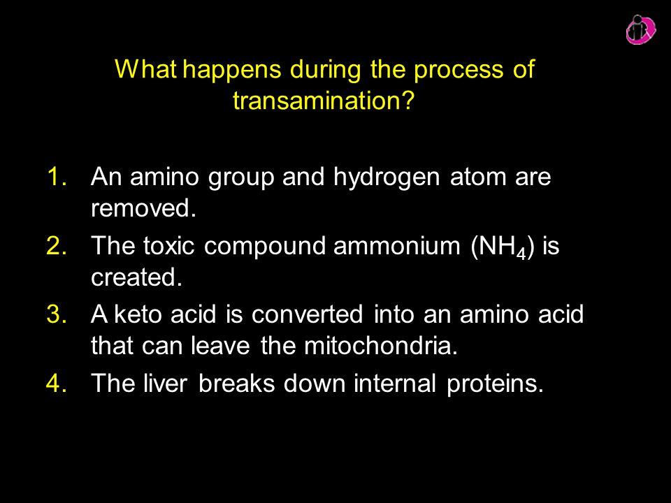 What happens during the process of transamination? 1.An amino group and hydrogen atom are removed. 2.The toxic compound ammonium (NH 4 ) is created. 3