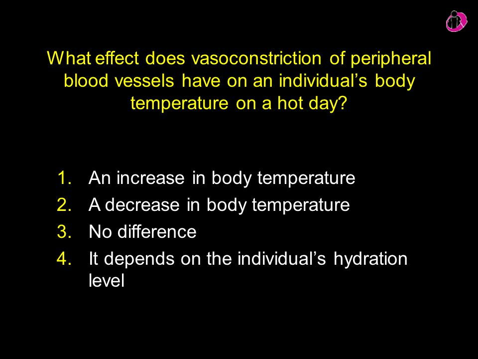 What effect does vasoconstriction of peripheral blood vessels have on an individual's body temperature on a hot day? 1.An increase in body temperature