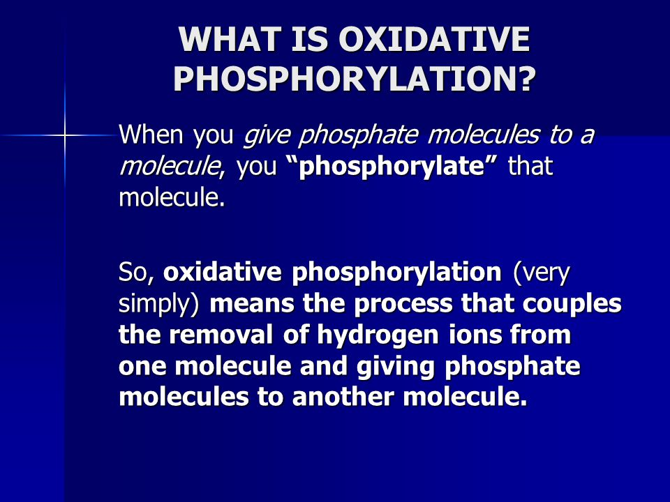 "WHAT IS OXIDATIVE PHOSPHORYLATION? When you give phosphate molecules to a molecule, you ""phosphorylate"" that molecule. So, oxidative phosphorylation ("