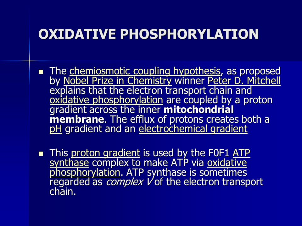 OXIDATIVE PHOSPHORYLATION The chemiosmotic coupling hypothesis, as proposed by Nobel Prize in Chemistry winner Peter D. Mitchell explains that the ele