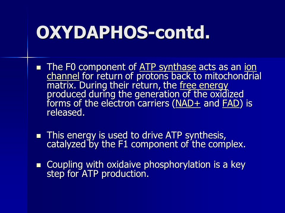 OXYDAPHOS-contd. The F0 component of ATP synthase acts as an ion channel for return of protons back to mitochondrial matrix. During their return, the