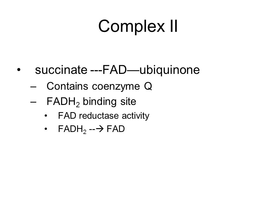 Complex II succinate ---FAD—ubiquinone –Contains coenzyme Q –FADH 2 binding site FAD reductase activity FADH 2 --  FAD