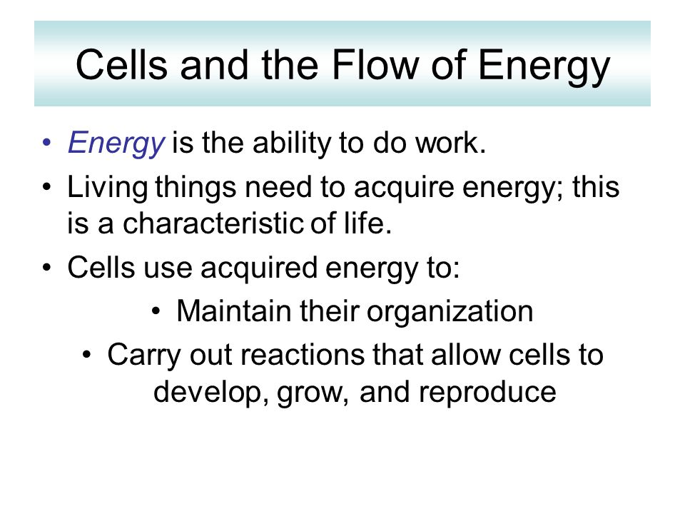 Cells and the Flow of Energy Energy is the ability to do work. Living things need to acquire energy; this is a characteristic of life. Cells use acqui