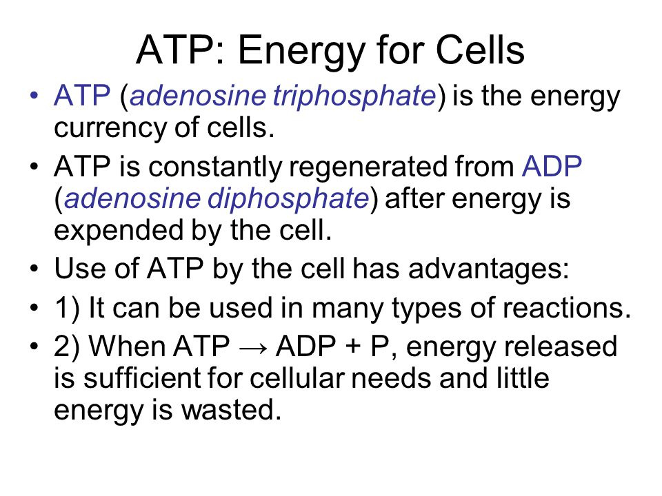 ATP: Energy for Cells ATP (adenosine triphosphate) is the energy currency of cells. ATP is constantly regenerated from ADP (adenosine diphosphate) aft
