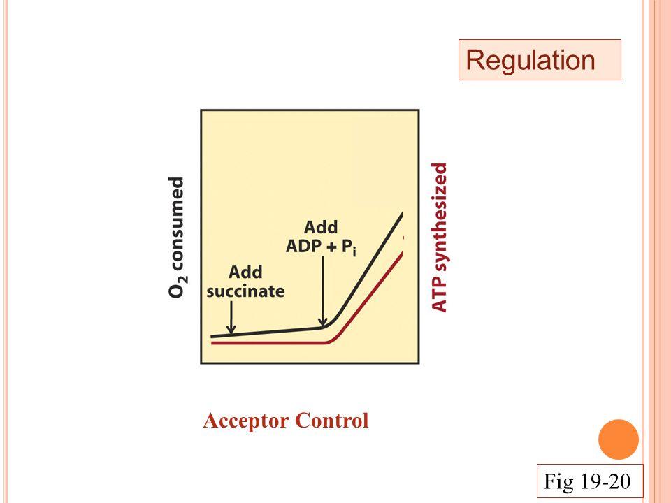 Regulation Acceptor Control Fig 19-20