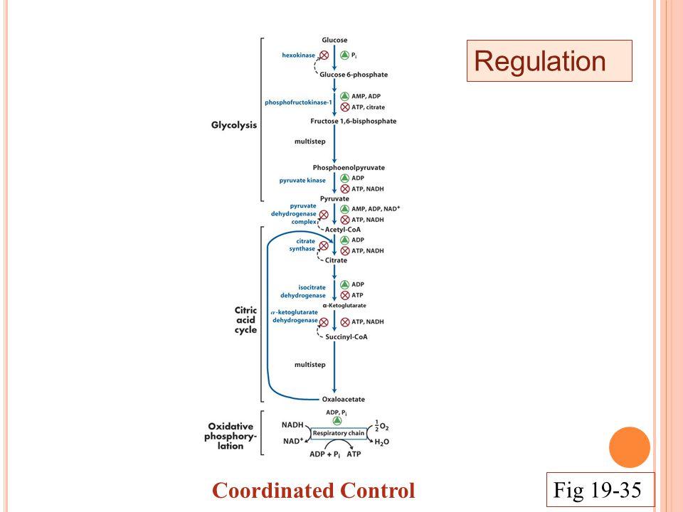 Regulation Coordinated Control Fig 19-35