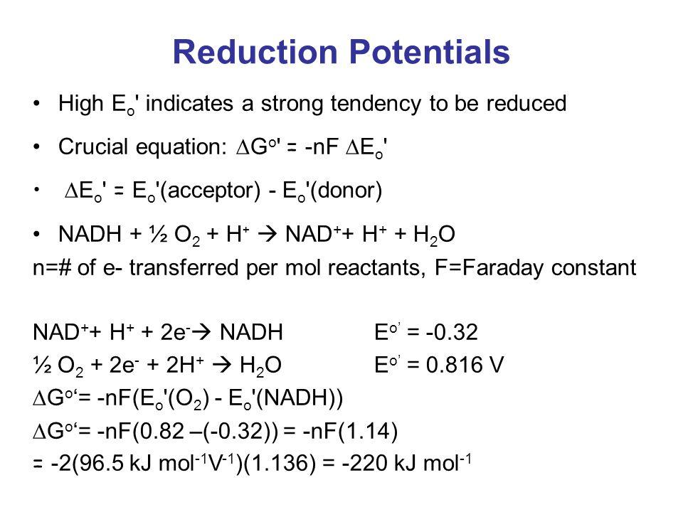 Reduction Potentials High E o ' indicates a strong tendency to be reduced Crucial equation:  G o ' = -nF  E o '  E o ' = E o '(acceptor) - E o '(do