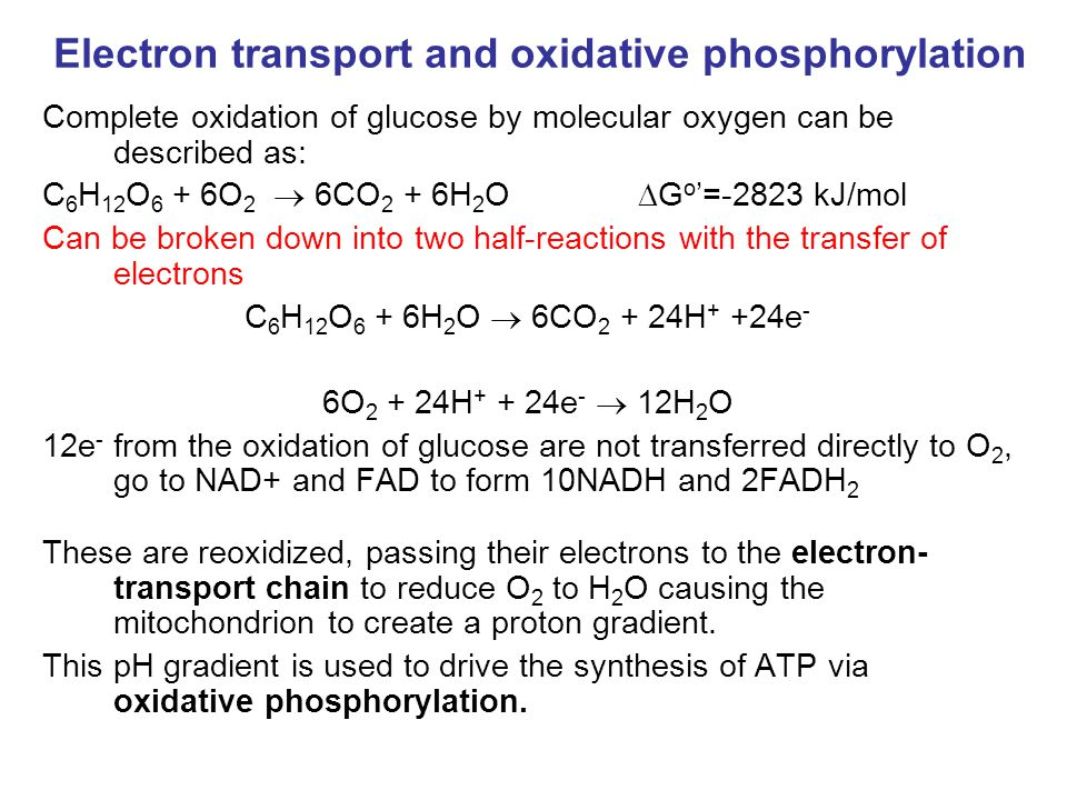 Electron Transport Four protein complexes in the inner mitochondrial membrane A lipid soluble coenzyme (UQ, CoQ) and a water soluble protein (cyt c) shuttle between protein complexes Electrons generally fall in energy through the chain - from complexes I and II to complex IV