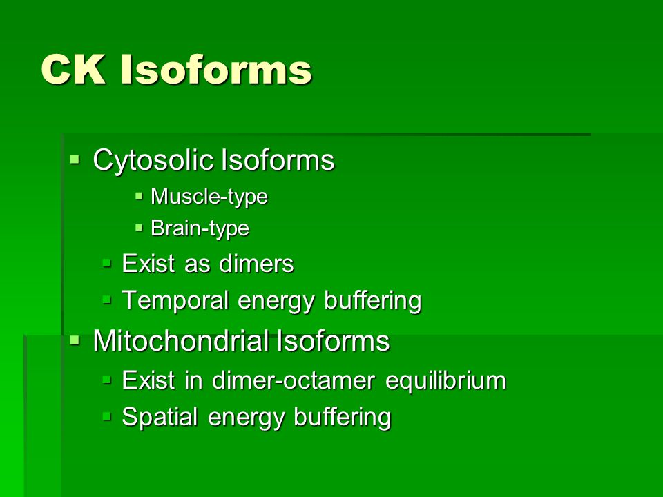 CK Isoforms  Cytosolic Isoforms  Muscle-type  Brain-type  Exist as dimers  Temporal energy buffering  Mitochondrial Isoforms  Exist in dimer-octamer equilibrium  Spatial energy buffering