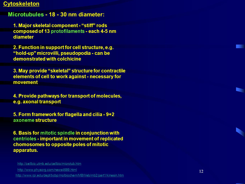 12 Cytoskeleton Microtubules - 18 - 30 nm diameter: 1.