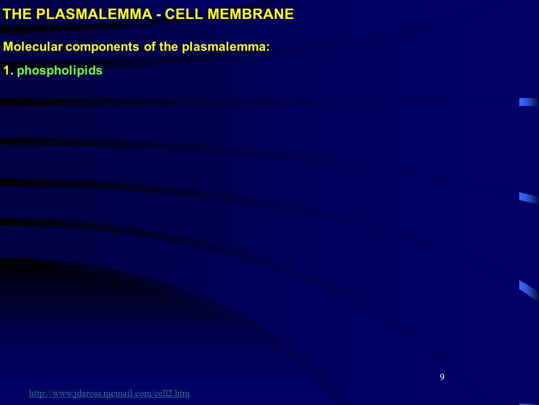 9 Molecular components of the plasmalemma: 1. phospholipids http://www.jdaross.mcmail.com/cell2.htm
