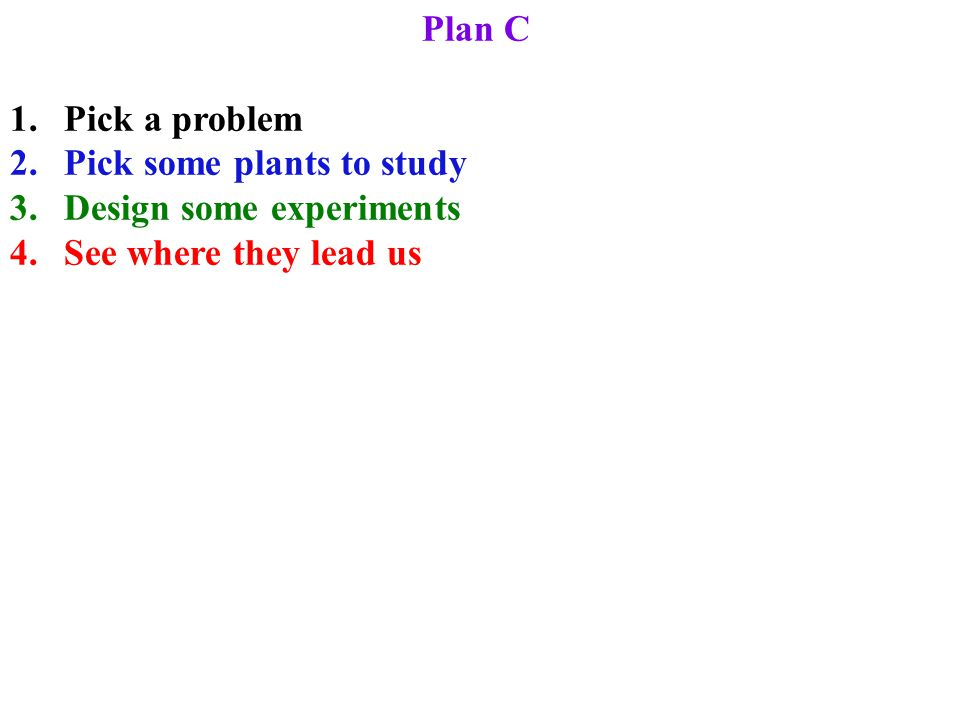 Plan C 1.Pick a problem 2.Pick some plants to study 3.Design some experiments 4.See where they lead us