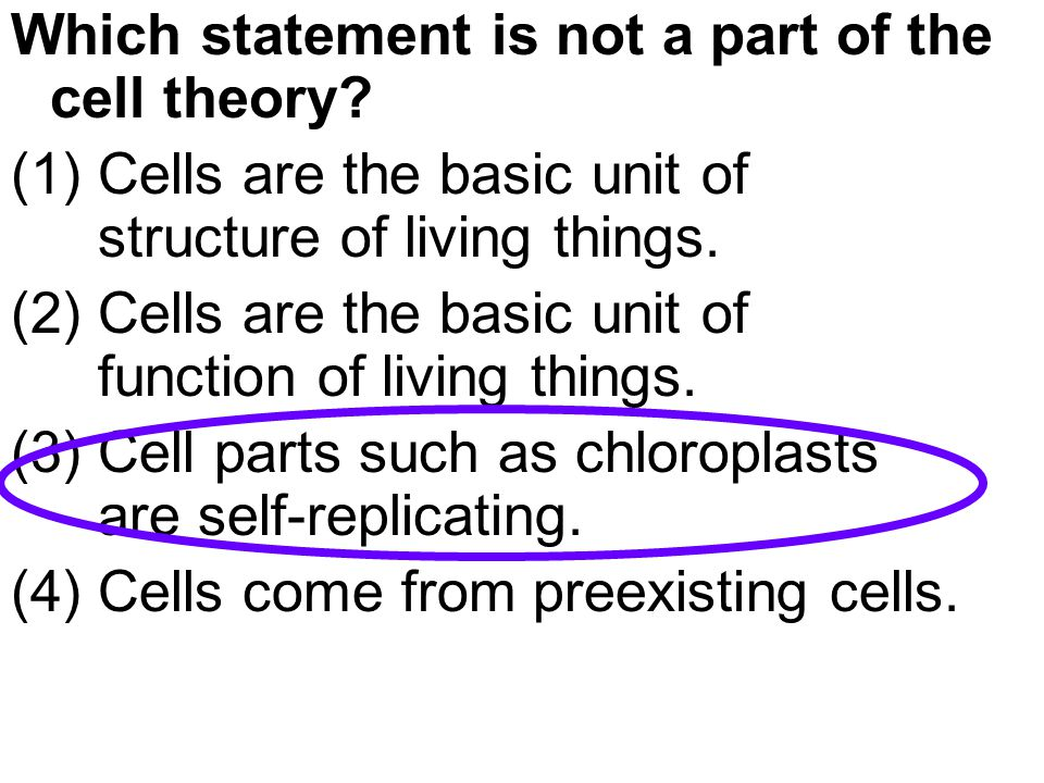 The rigidity (support) of a plant cell is due primarily to the presence of the (1) chloroplasts (2) centrosomes (3) cell membrane (4) cell wall