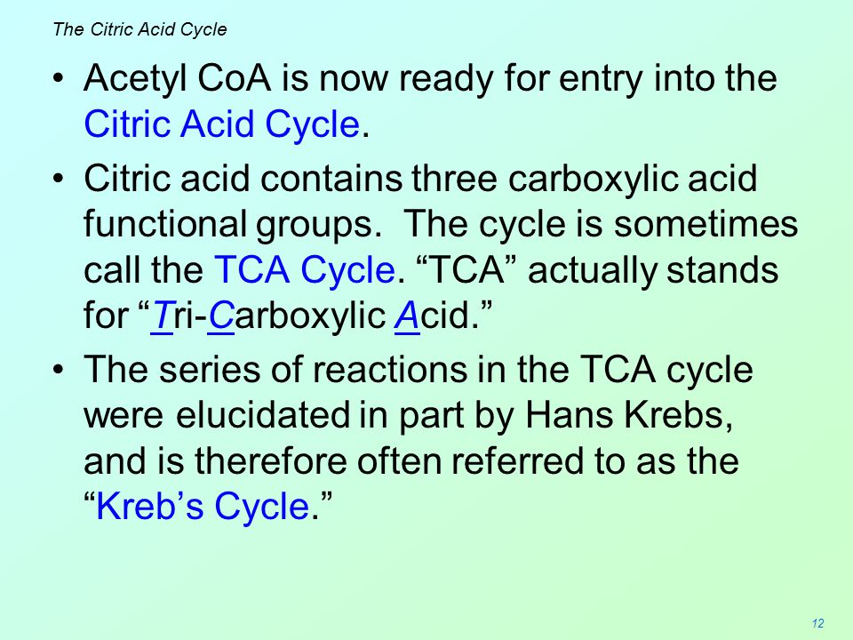 12 The Citric Acid Cycle Acetyl CoA is now ready for entry into the Citric Acid Cycle. Citric acid contains three carboxylic acid functional groups. T