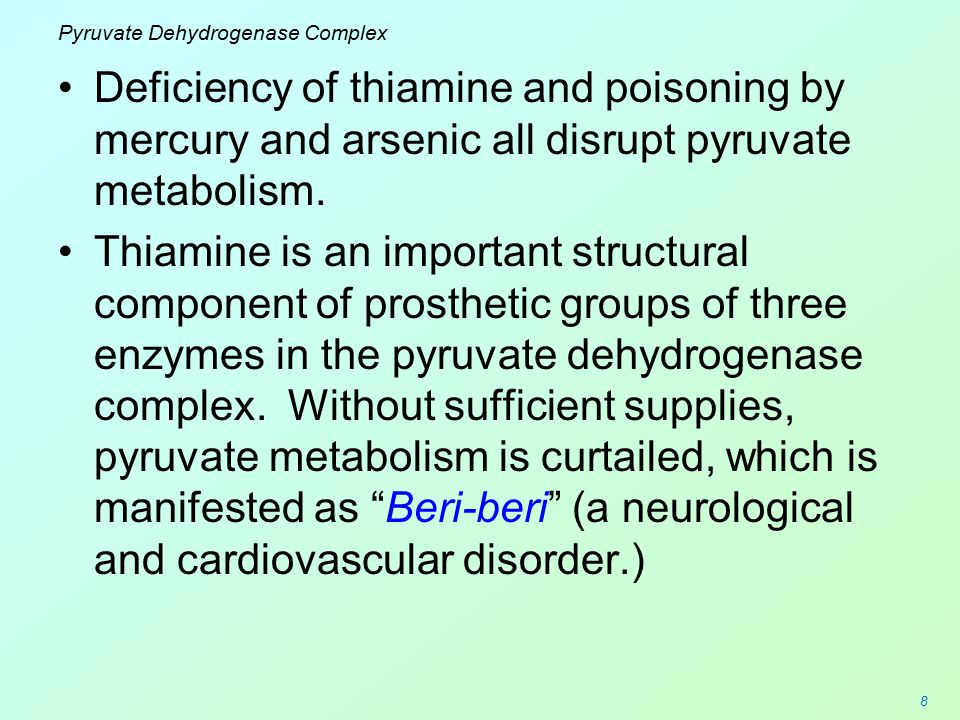 8 Pyruvate Dehydrogenase Complex Deficiency of thiamine and poisoning by mercury and arsenic all disrupt pyruvate metabolism. Thiamine is an important