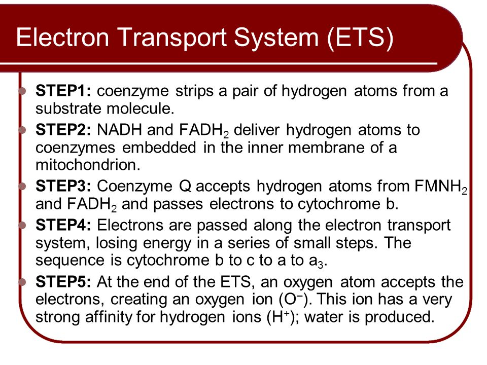 Electron Transport System (ETS) STEP1: coenzyme strips a pair of hydrogen atoms from a substrate molecule. STEP2: NADH and FADH 2 deliver hydrogen ato