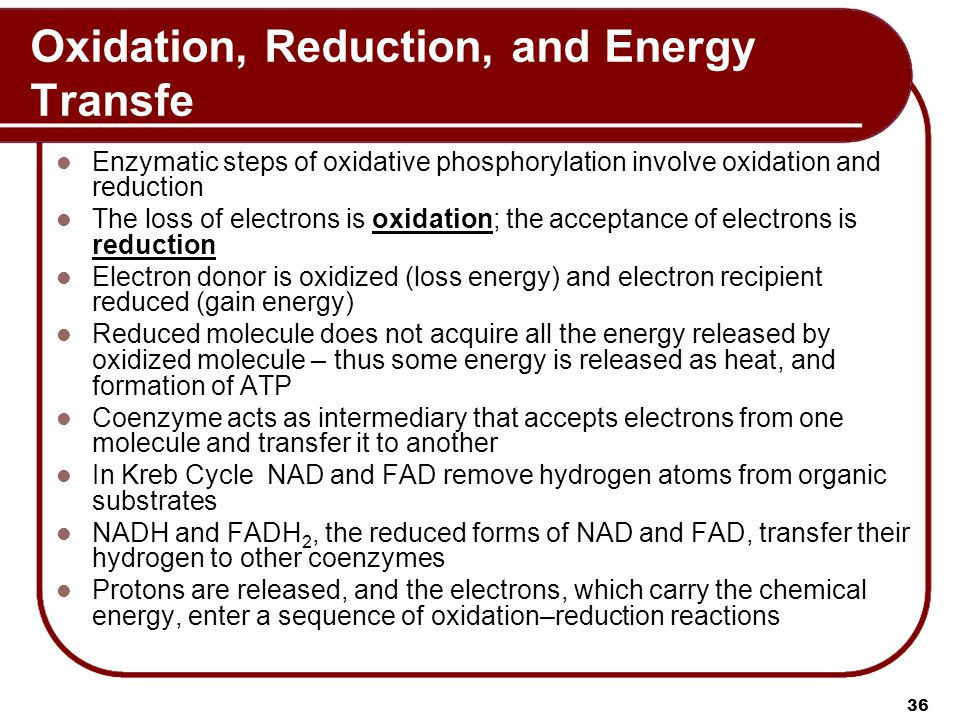 Oxidation, Reduction, and Energy Transfe Enzymatic steps of oxidative phosphorylation involve oxidation and reduction The loss of electrons is oxidation; the acceptance of electrons is reduction Electron donor is oxidized (loss energy) and electron recipient reduced (gain energy) Reduced molecule does not acquire all the energy released by oxidized molecule – thus some energy is released as heat, and formation of ATP Coenzyme acts as intermediary that accepts electrons from one molecule and transfer it to another In Kreb Cycle NAD and FAD remove hydrogen atoms from organic substrates NADH and FADH 2, the reduced forms of NAD and FAD, transfer their hydrogen to other coenzymes Protons are released, and the electrons, which carry the chemical energy, enter a sequence of oxidation–reduction reactions 36