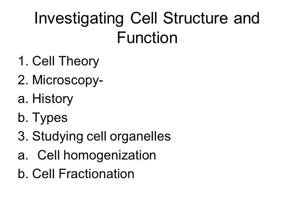 Organelle Movement Position of organelles not fixed in the cell