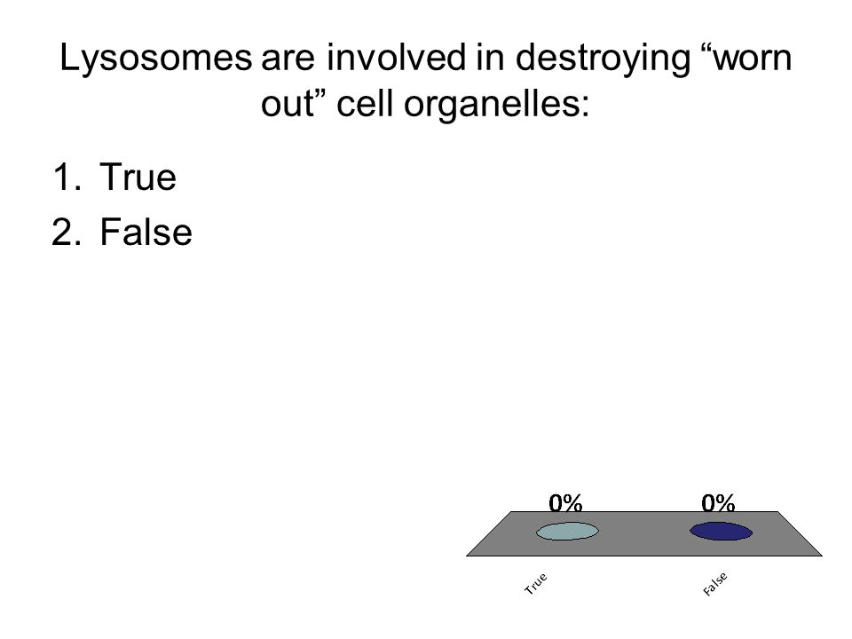 "Lysosomes are involved in destroying ""worn out"" cell organelles: 1.True 2.False"