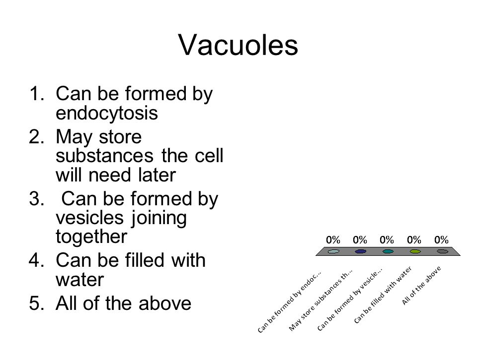 Vacuoles 1.Can be formed by endocytosis 2.May store substances the cell will need later 3. Can be formed by vesicles joining together 4.Can be filled