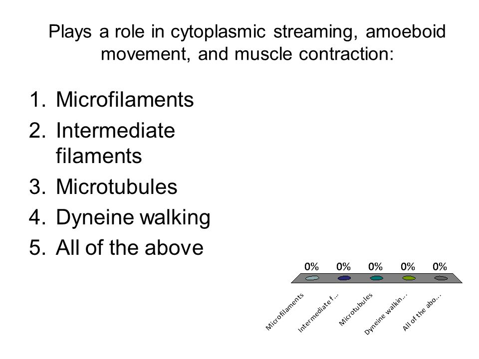 Plays a role in cytoplasmic streaming, amoeboid movement, and muscle contraction: 1.Microfilaments 2.Intermediate filaments 3.Microtubules 4.Dyneine w