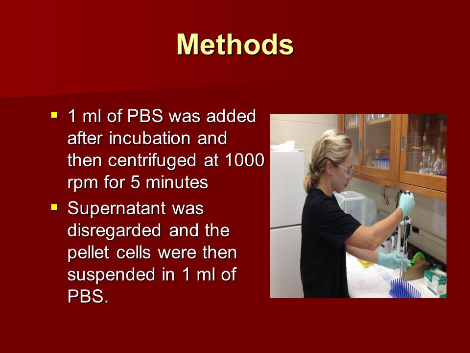 Methods  1 ml of PBS was added after incubation and then centrifuged at 1000 rpm for 5 minutes  Supernatant was disregarded and the pellet cells were then suspended in 1 ml of PBS.