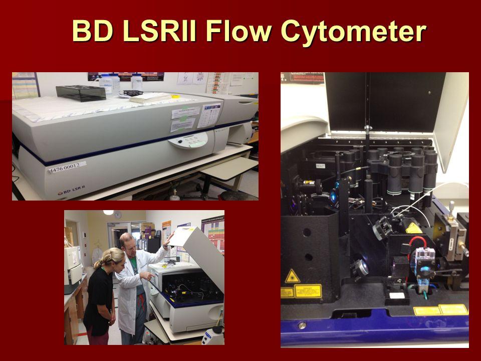 BD LSRII Flow Cytometer