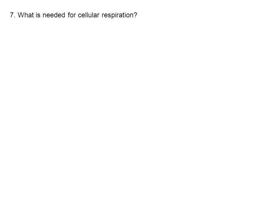 7. What is needed for cellular respiration?
