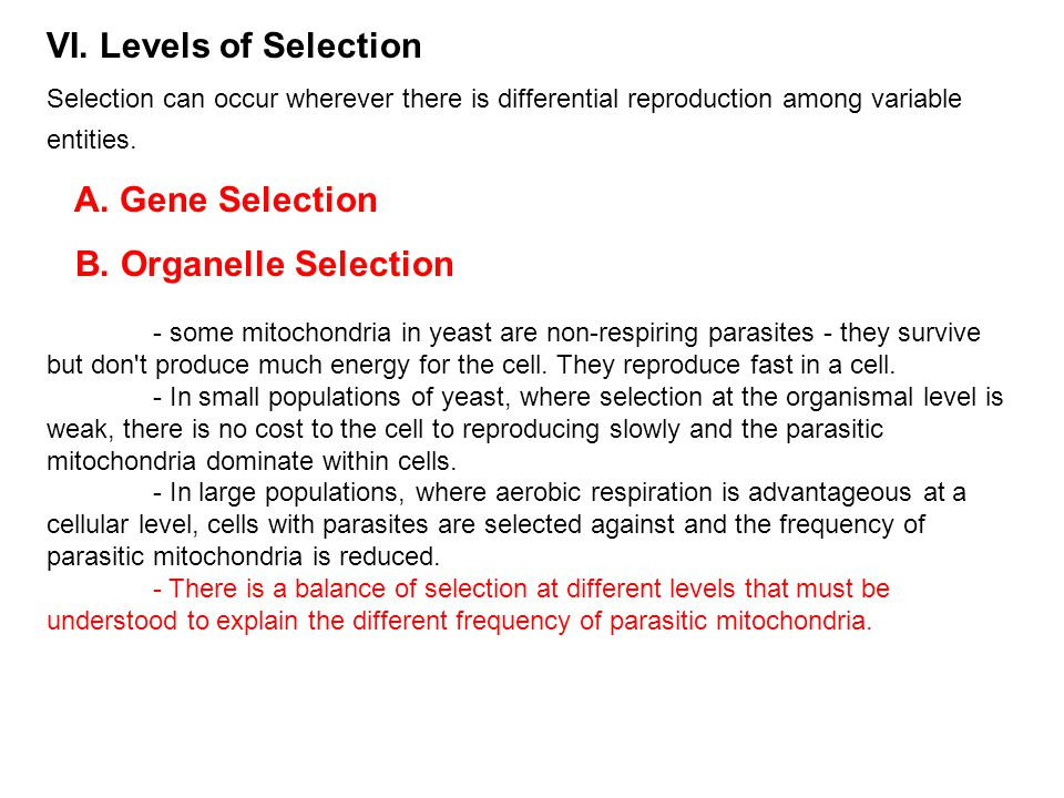 VI. Levels of Selection Selection can occur wherever there is differential reproduction among variable entities. A. Gene Selection B. Organelle Select