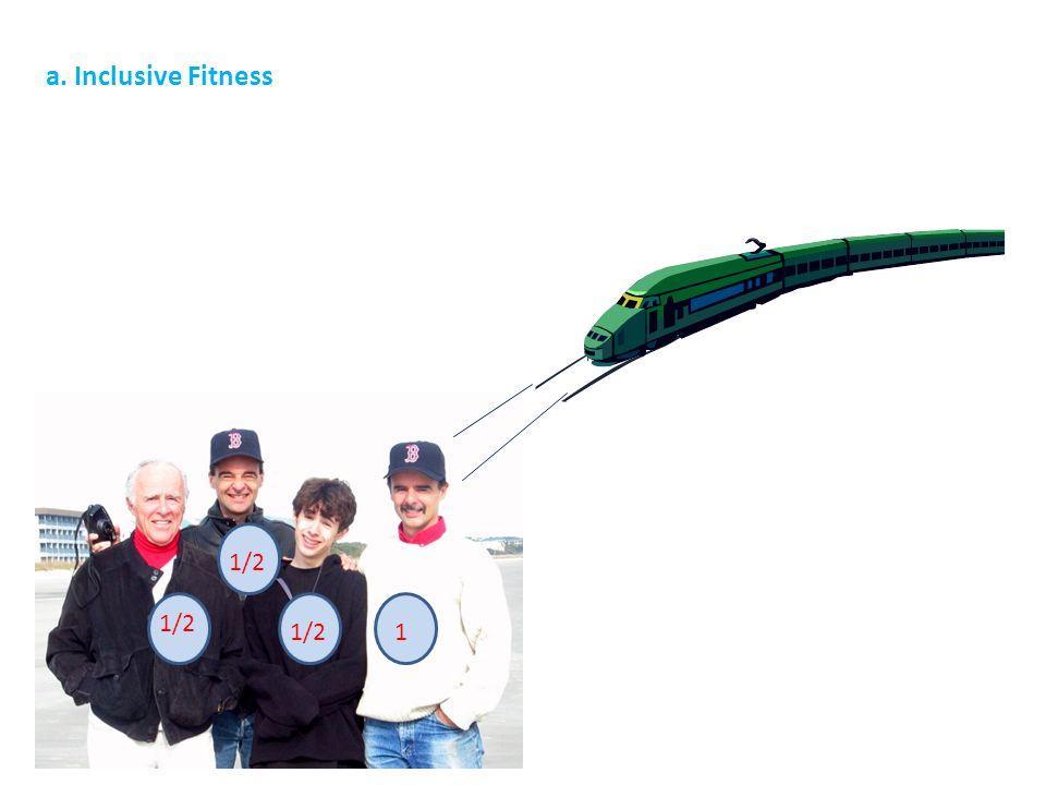 1/2 1 a. Inclusive Fitness