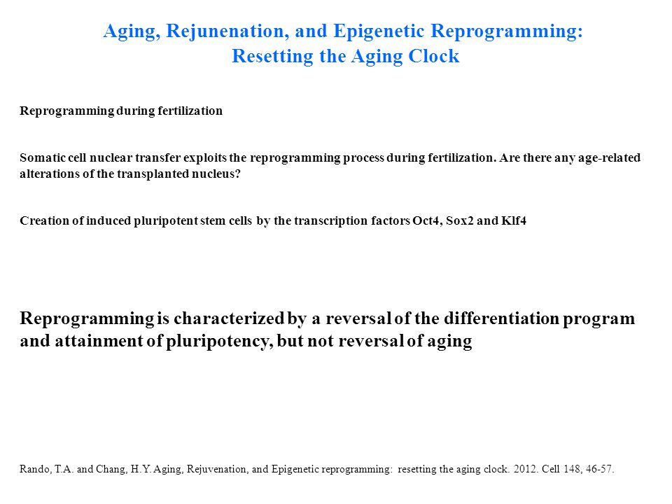 Aging, Rejunenation, and Epigenetic Reprogramming: Resetting the Aging Clock Reprogramming during fertilization Somatic cell nuclear transfer exploits