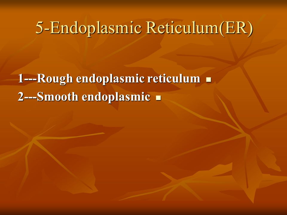 5-Endoplasmic Reticulum(ER) 1---Rough endoplasmic reticulum 1---Rough endoplasmic reticulum 2---Smooth endoplasmic 2---Smooth endoplasmic