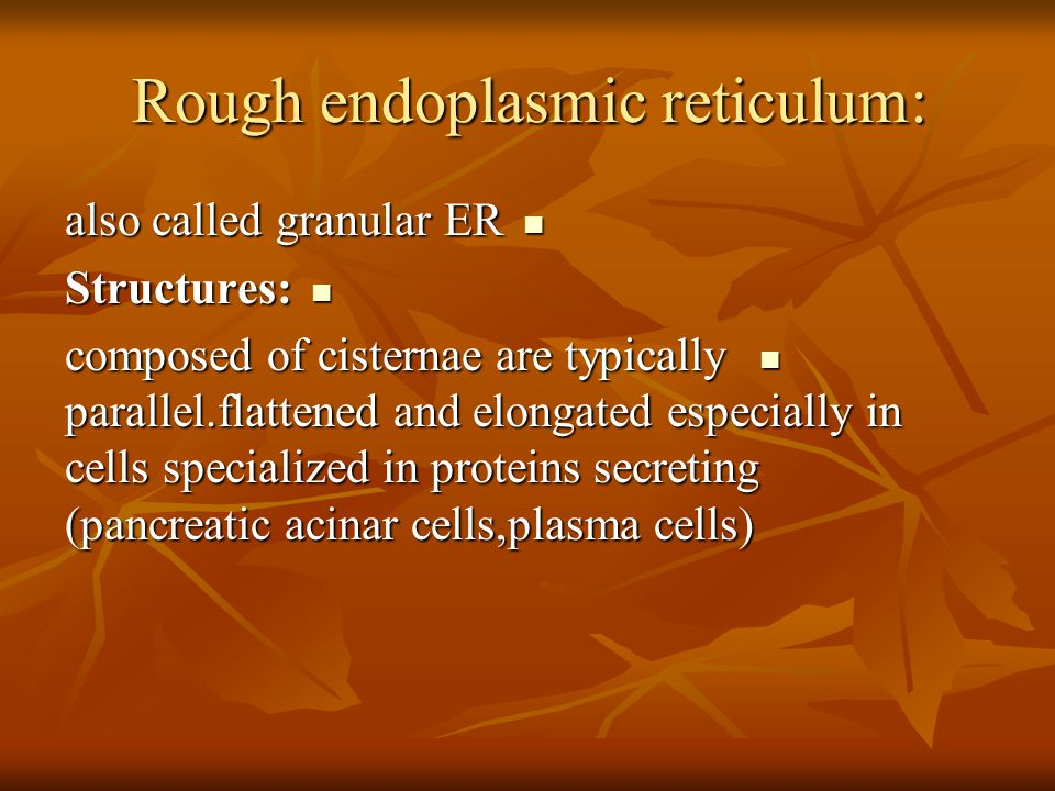 Rough endoplasmic reticulum: also called granular ER also called granular ER Structures: Structures: composed of cisternae are typically parallel.flattened and elongated especially in cells specialized in proteins secreting (pancreatic acinar cells,plasma cells) composed of cisternae are typically parallel.flattened and elongated especially in cells specialized in proteins secreting (pancreatic acinar cells,plasma cells)