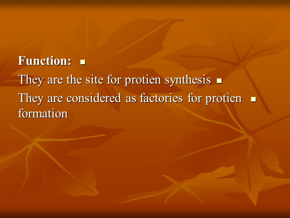 Function: Function: They are the site for protien synthesis They are the site for protien synthesis They are considered as factories for protien formation They are considered as factories for protien formation