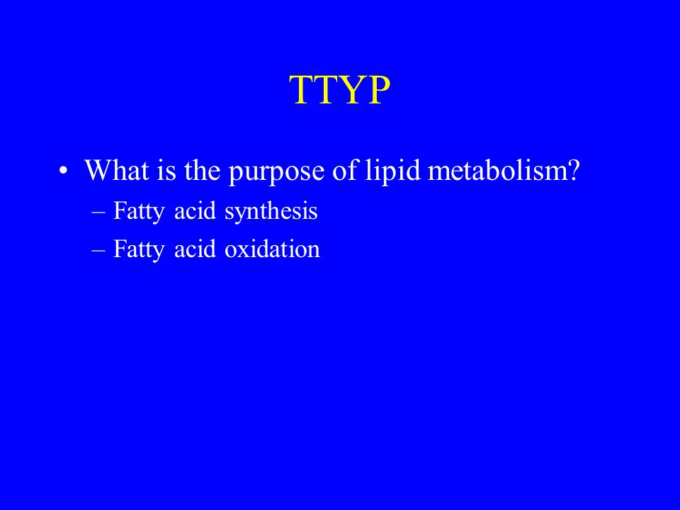TTYP What is the purpose of lipid metabolism? –Fatty acid synthesis –Fatty acid oxidation