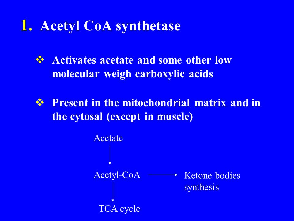 1. Acetyl CoA synthetase  Activates acetate and some other low molecular weigh carboxylic acids  Present in the mitochondrial matrix and in the cyto