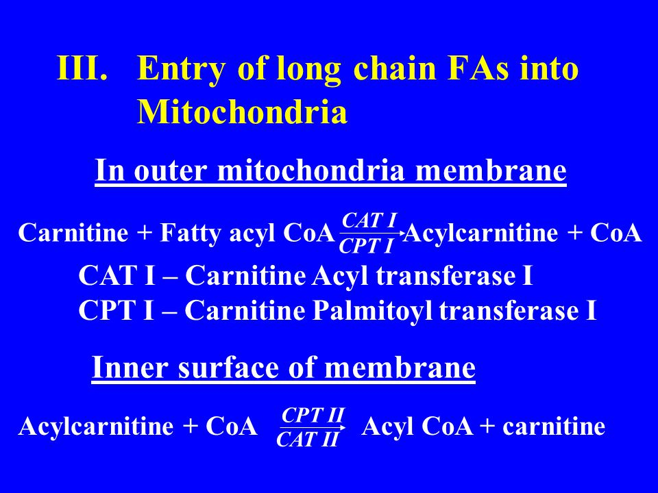 III.Entry of long chain FAs into Mitochondria In outer mitochondria membrane Carnitine + Fatty acyl CoA Acylcarnitine + CoA CAT I CPT I CAT I – Carnitine Acyl transferase I CPT I – Carnitine Palmitoyl transferase I Inner surface of membrane Acylcarnitine + CoA Acyl CoA + carnitine CPT II CAT II