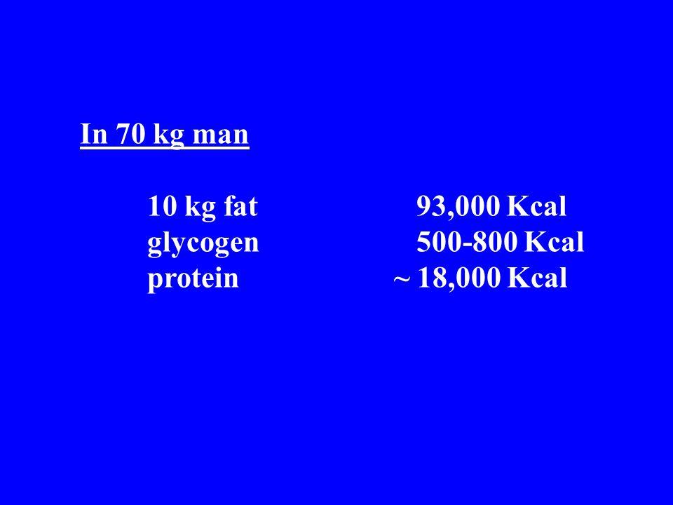 In 70 kg man 10 kg fat93,000 Kcal glycogen500-800 Kcal protein ~ 18,000 Kcal