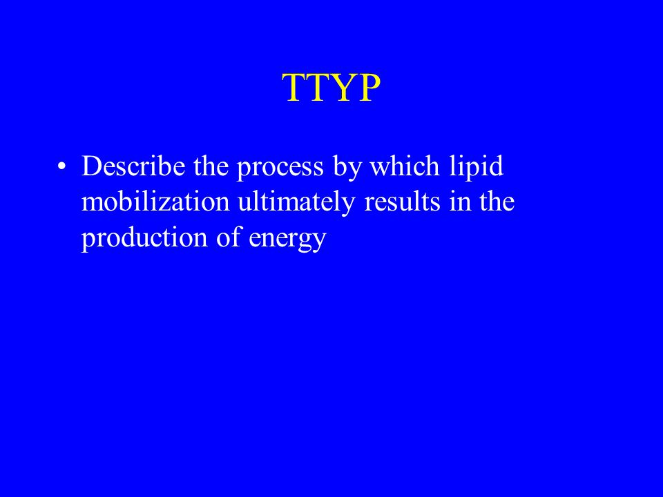 TTYP Describe the process by which lipid mobilization ultimately results in the production of energy