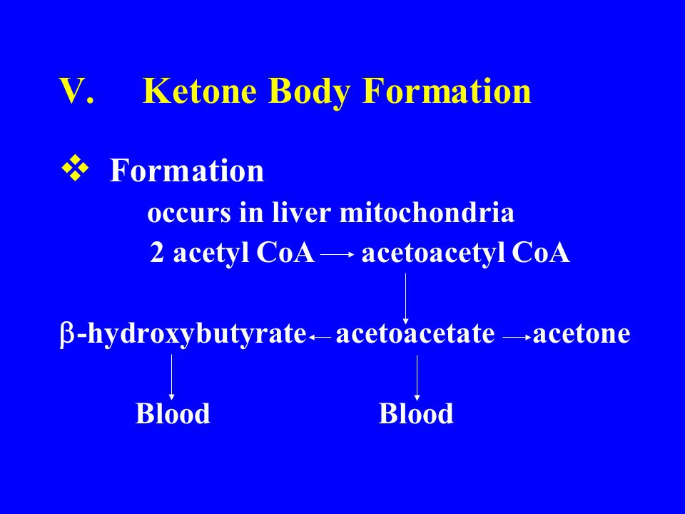 V.Ketone Body Formation  Formation occurs in liver mitochondria 2 acetyl CoA acetoacetyl CoA  -hydroxybutyrate acetoacetate acetone Blood Blood
