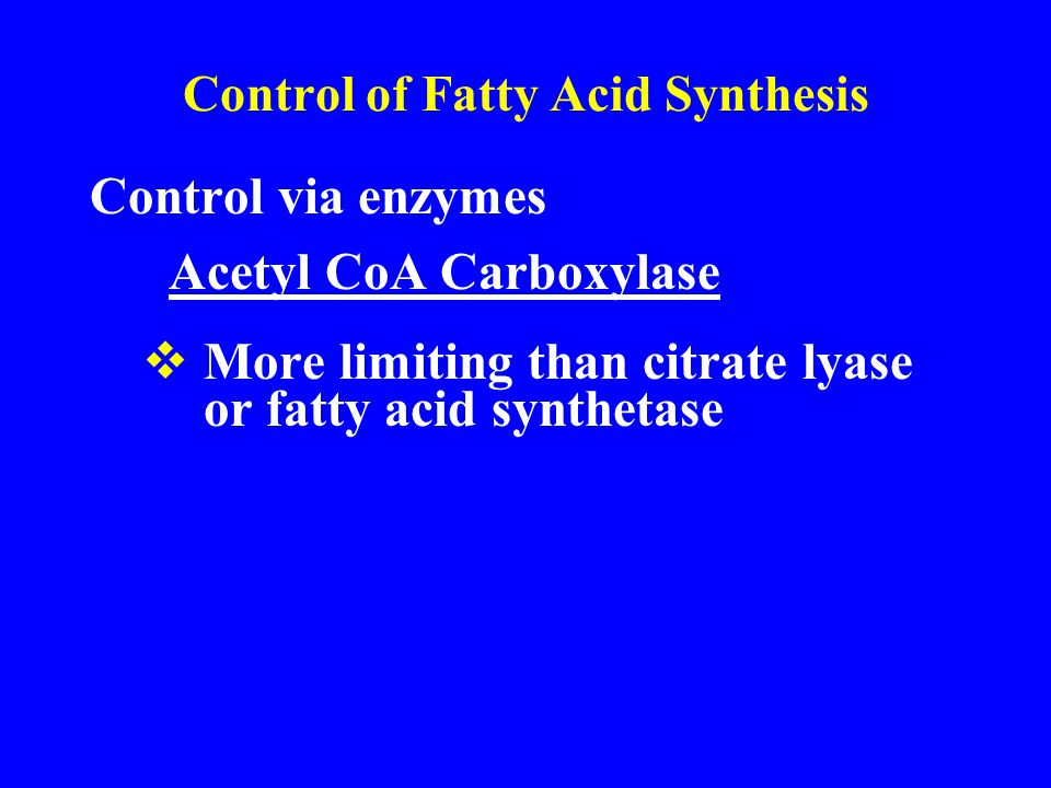 Control of Fatty Acid Synthesis Control via enzymes Acetyl CoA Carboxylase  More limiting than citrate lyase or fatty acid synthetase