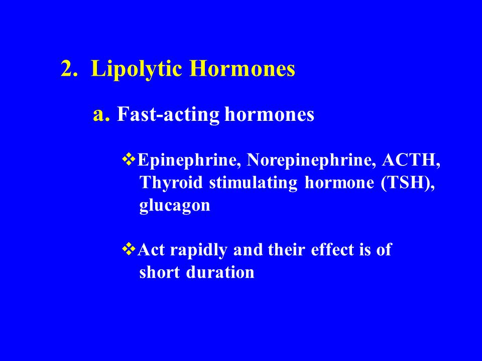 2. Lipolytic Hormones a. Fast-acting hormones  Epinephrine, Norepinephrine, ACTH, Thyroid stimulating hormone (TSH), glucagon  Act rapidly and their