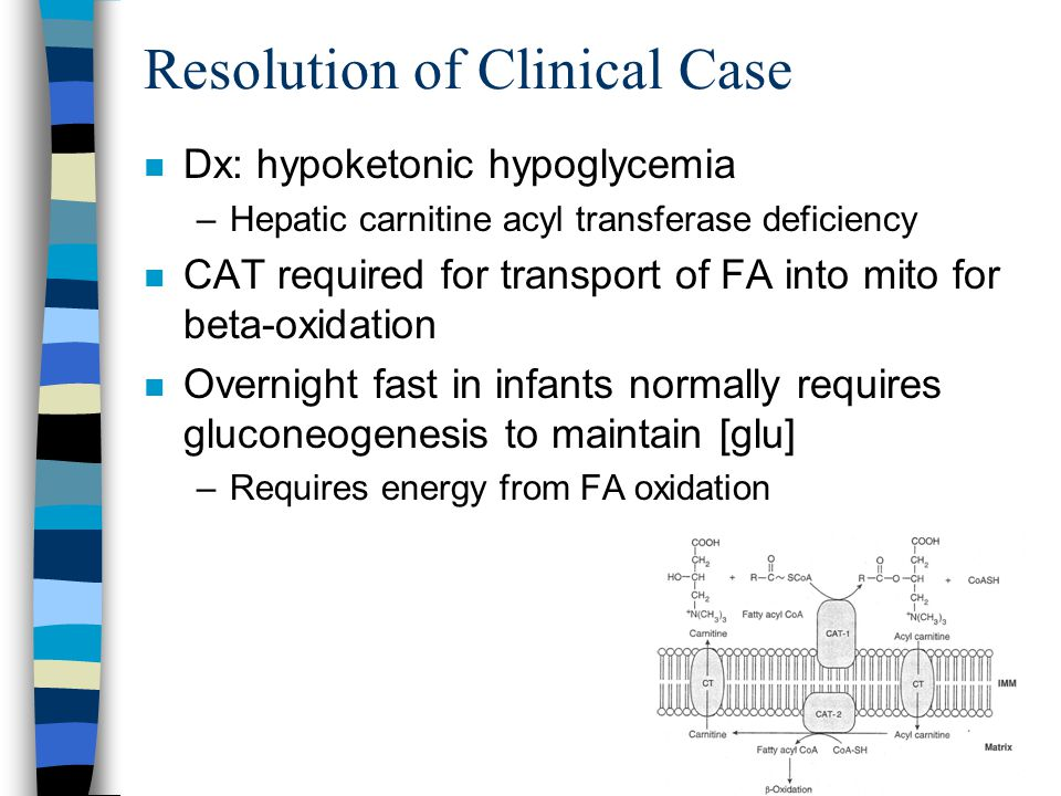 Resolution of Clinical Case n Dx: hypoketonic hypoglycemia –Hepatic carnitine acyl transferase deficiency n CAT required for transport of FA into mito for beta-oxidation n Overnight fast in infants normally requires gluconeogenesis to maintain [glu] –Requires energy from FA oxidation
